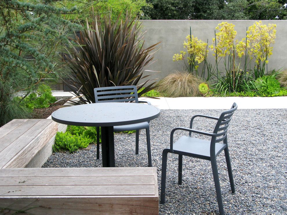 Kangaroo Paw Plant for a Modern Landscape with a Gravel and Cotton Jones Retreat by Debora Carl Landscape Design