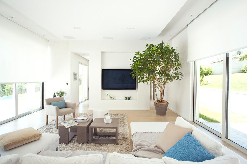 Ken Caryl Glass for a Modern Living Room with a Beige Rug and Somfy by Somfy