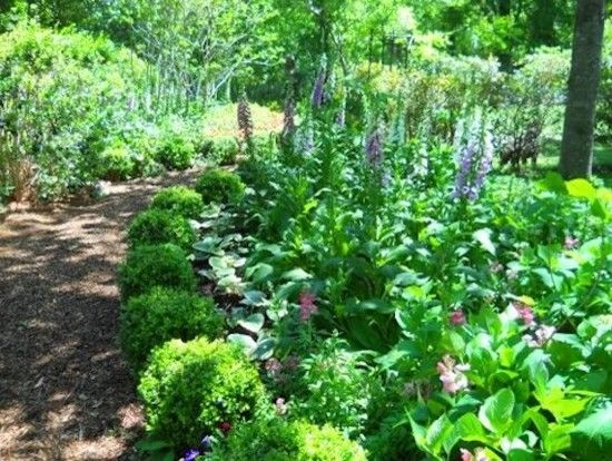 Lakeland Yard and Garden for a Traditional Landscape with a Landscape and Gallery by Lakeland Yard & Garden Center