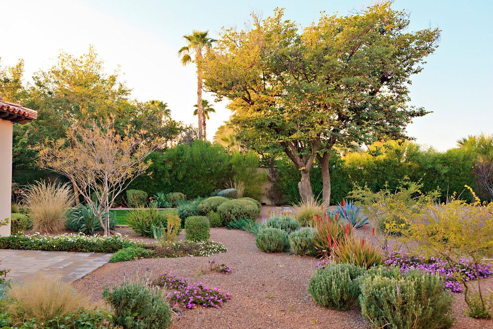 Landscapers Supply for a Mediterranean Landscape with a Trees and Camelback Royal View by Hendricks Construction