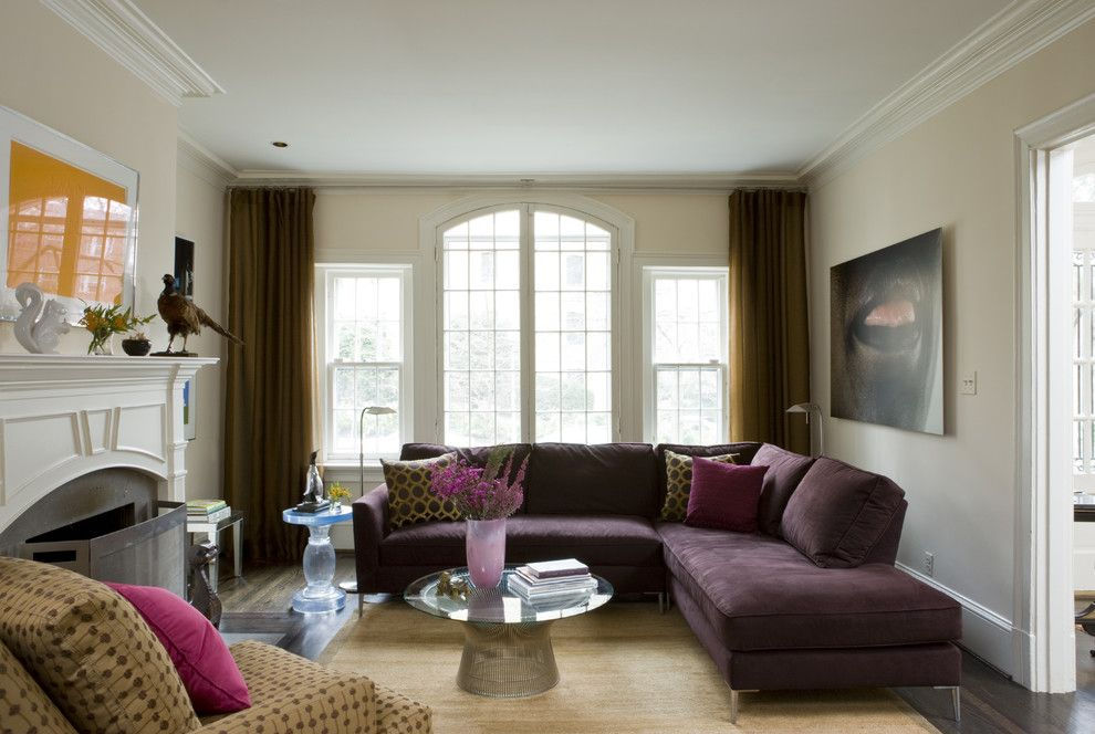 Levins Furniture for a Contemporary Family Room with a Artwork and Washington, Dc by Liz Levin Interiors
