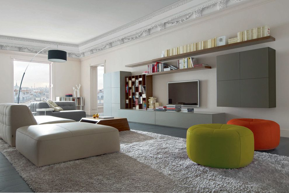 Ligne Roset Nyc for a Contemporary Family Room with a Dider Gomez and Book & Look Modular Wall Unit by Ligne Roset by Ligne Roset Chicago