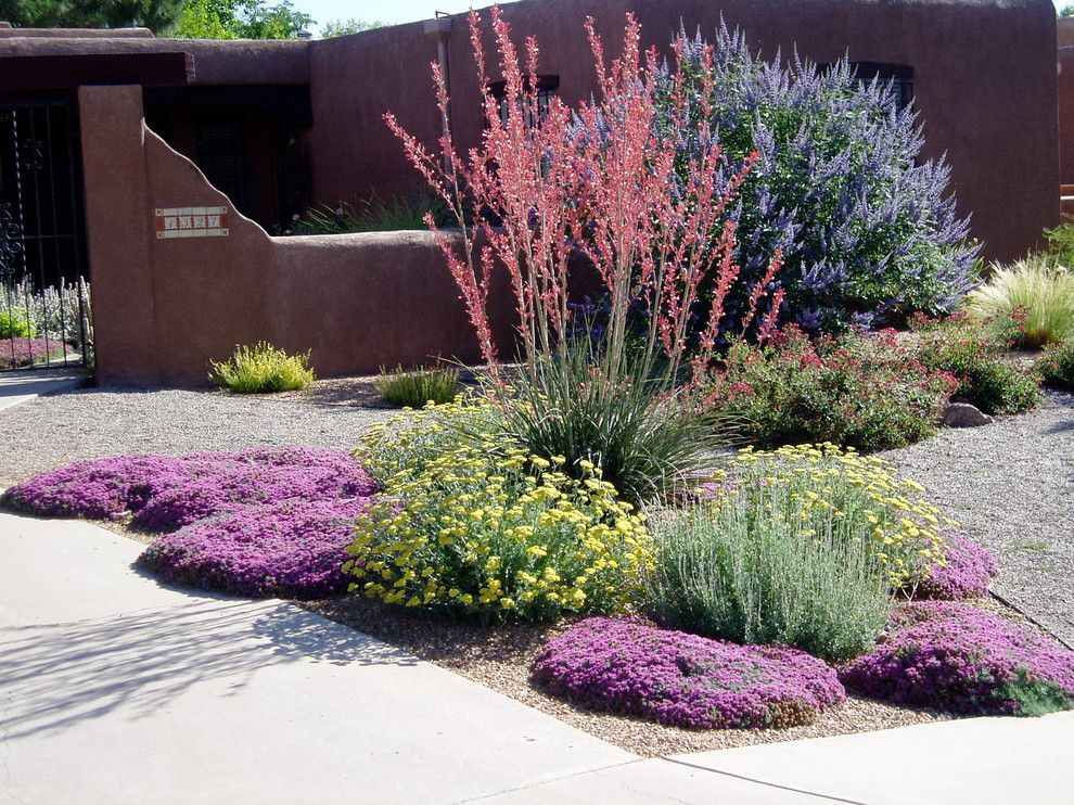 Lowes Albuquerque for a Southwestern Landscape with a Xeric Color and Waterwise Landscapes by Waterwise Landscapes Incorporated