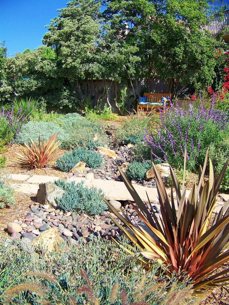 Lowes Carlsbad for a Mediterranean Landscape with a Path and Rancho Pennasquitos by Letz Design Landscape