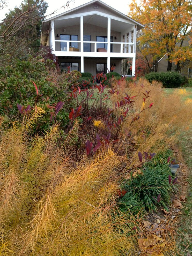 Lowes Charlottesville for a Contemporary Landscape with a Virginia and Lake Near Fredericksburg, Va:  Plant&sustain for Clean Water by Gentle Gardener Green Design