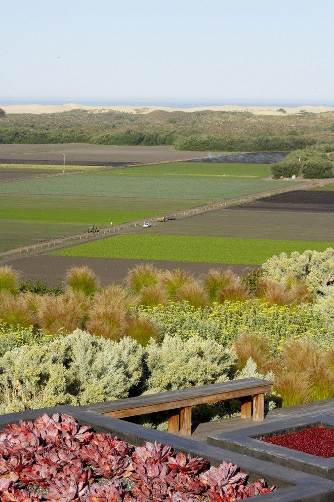 Lowes Enterprise Al for a Asian Landscape with a Drought Tolerant and Farm Field Pacific Rim by Jeffrey Gordon Smith Landscape Architecture