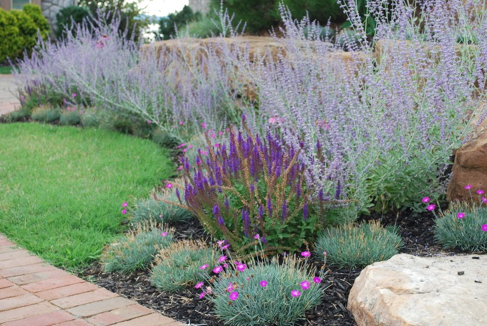 Lowes Hot Springs Ar for a Eclectic Landscape with a Dianthus and Bsr Project Revisited 8 Months Later. by Sifford Garden Design by Jay Sifford Garden Design