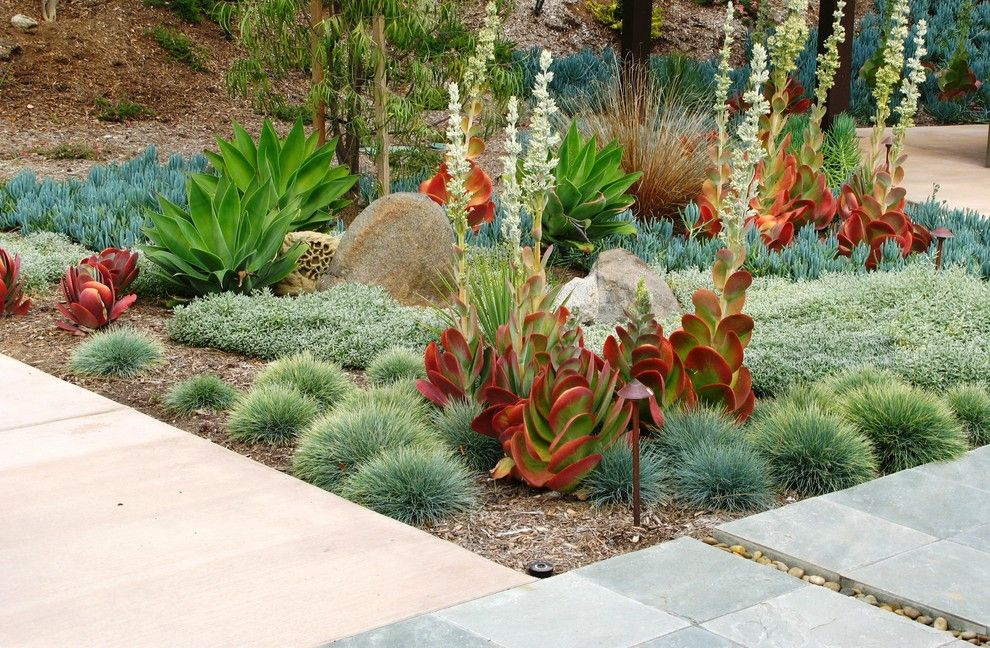 Lowes Ocala Fl for a Contemporary Landscape with a Beach Pebbles and Debora Carl Landscape Design by Debora Carl Landscape Design