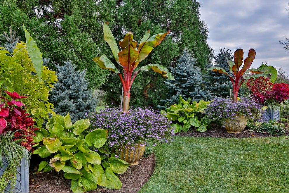 Lowes Paterson Nj for a Traditional Landscape with a Trees and Bedminster Nj by the Todd Group
