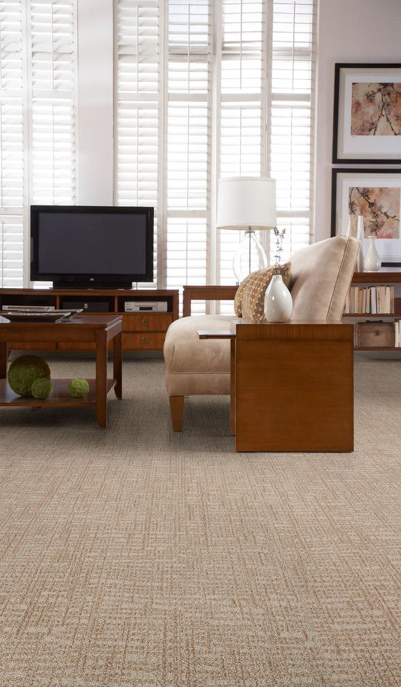 Masland Carpet for a  Living Room with a Carpet and Living Room by Masland Carpets
