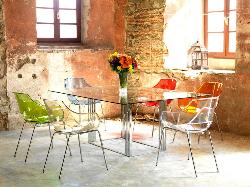 Modernlinefurniture for a Rustic Dining Room with a Birdcage and Modern Chairs by Imagine Living