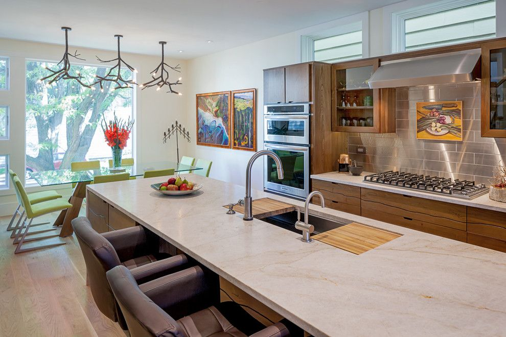 Msi Tile for a Contemporary Kitchen with a Green and Chicago Net Positive Luxury Home by Kipnis Architecture + Planning