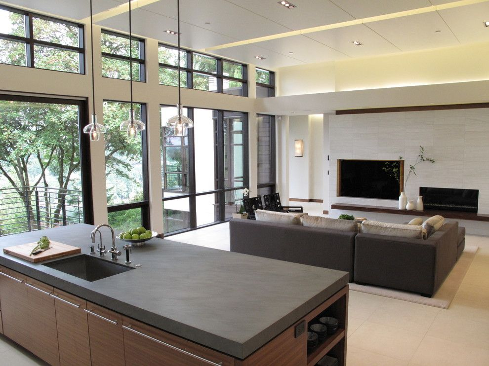 Mullioned Windows for a Contemporary Family Room with a Gray and Quantum Windows & Doors | Reveal Architecture & Interiors by Quantum Windows & Doors