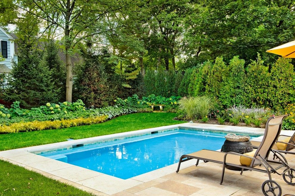 Nps Pool Supply for a Traditional Pool with a Chicago Pool and Winnetka, Il Swimming Pool by Platinum Poolcare