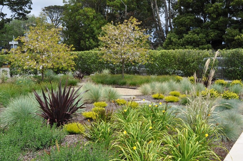 Phormium for a Contemporary Landscape with a Path and Park Residence by Huettl Landscape Architecture