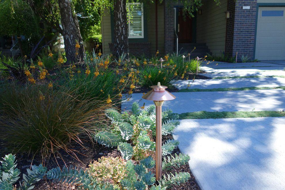 Phormium for a Modern Landscape with a Modern Landscape Designer and Modern Water-Side Landscape Remodel - Front, Bel Marin Keys, Novato, CA by Dig Your Garden Landscape Design