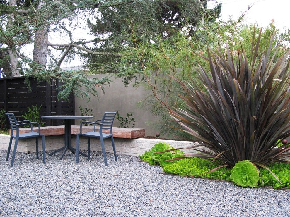 Phormium for a Modern Landscape with a Wall and Cotton Jones Retreat by Debora Carl Landscape Design
