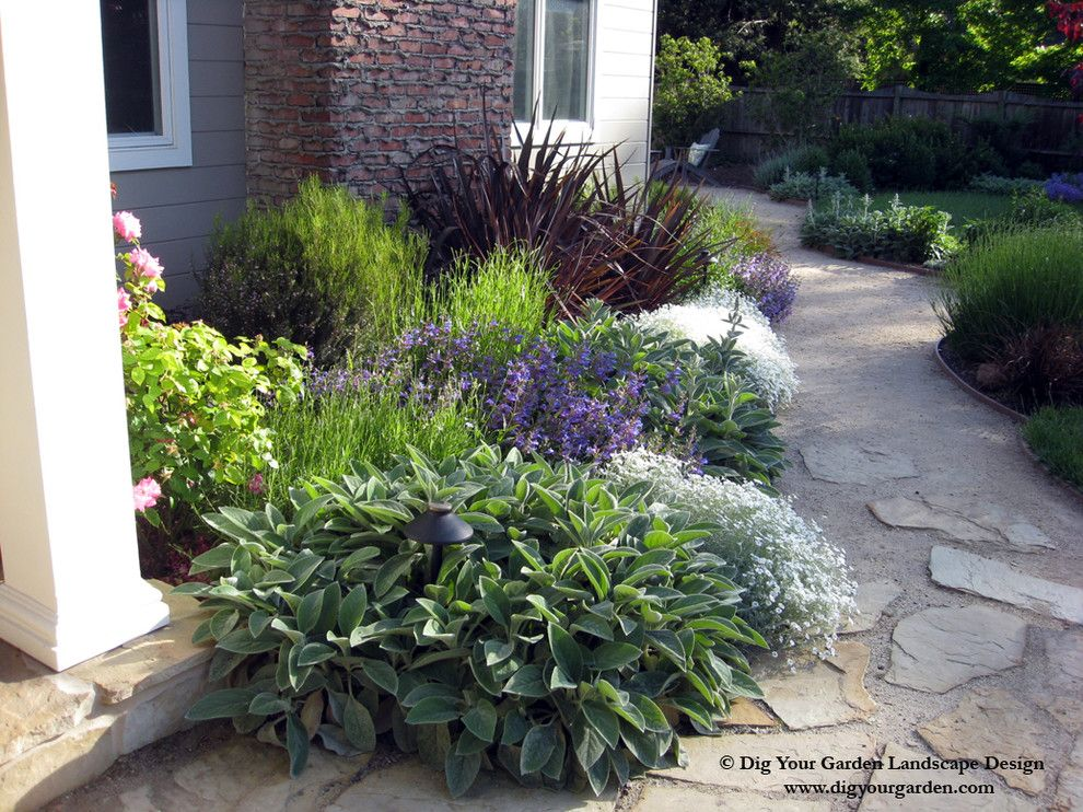 Phormium for a Traditional Landscape with a Planting for Entrance and Plant Combinations   Northern California Gardens by Dig Your Garden Landscape Design