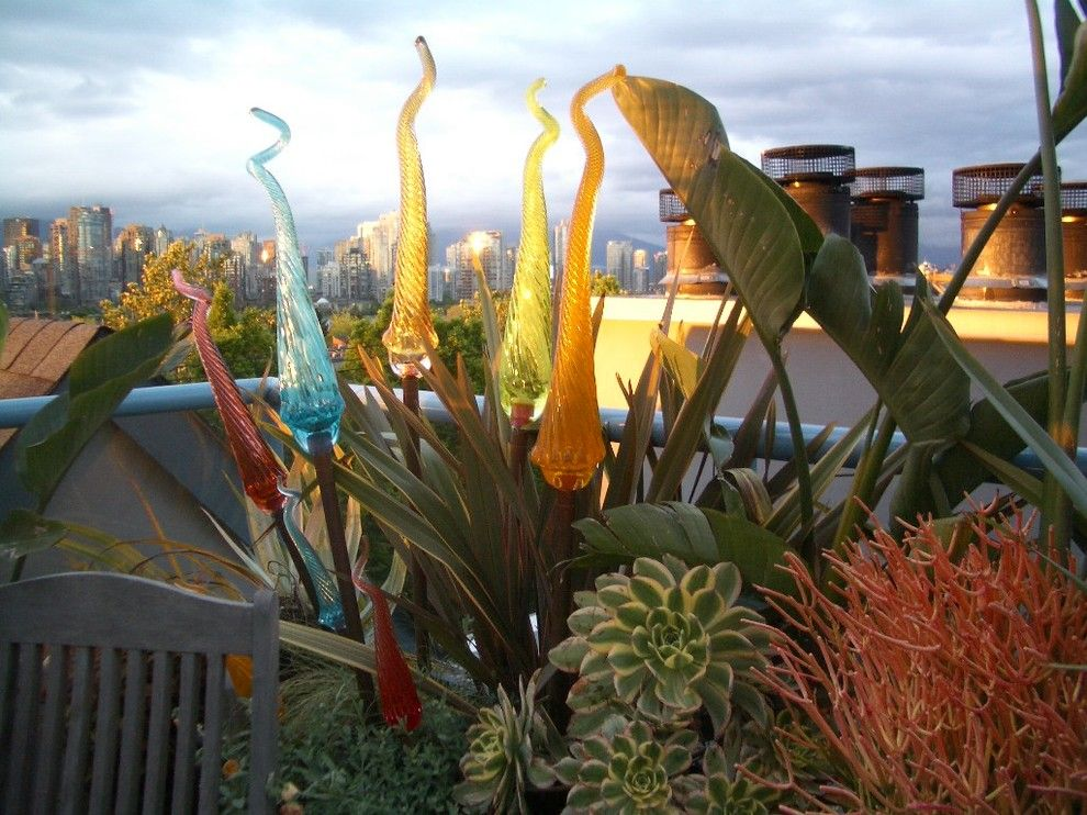 Phormium for a Tropical Landscape with a Glass and Rooftop Terrace by Glenna Partridge Garden Design