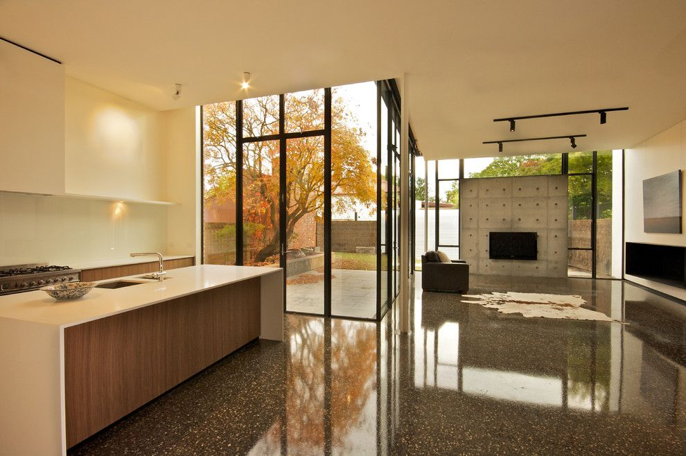 Polished Concrete Countertops for a Contemporary Kitchen with a Tall Windows and Contemporary Kitchen by Moloneyarchitects.com.au