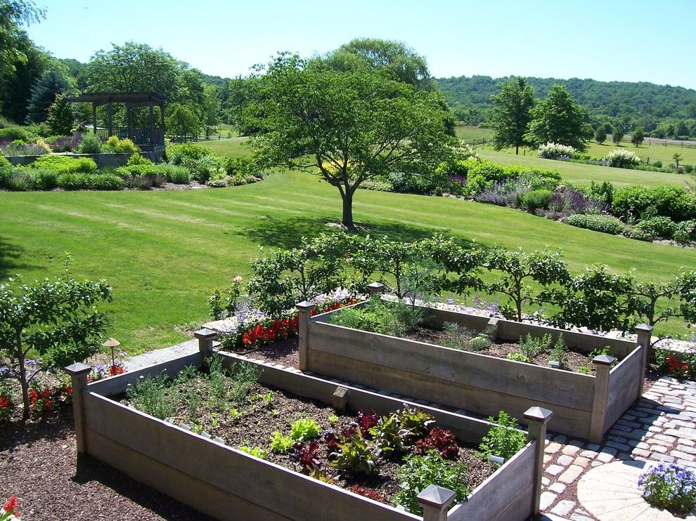 Potager Garden for a Traditional Landscape with a Lawn and Vegetable Gardens by Dear Garden Associates, Inc.