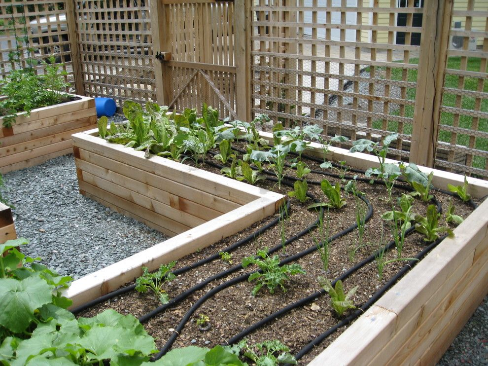 Potager Garden for a Traditional Landscape with a Raised Beds and Fenced Garden by Land Design, Inc.