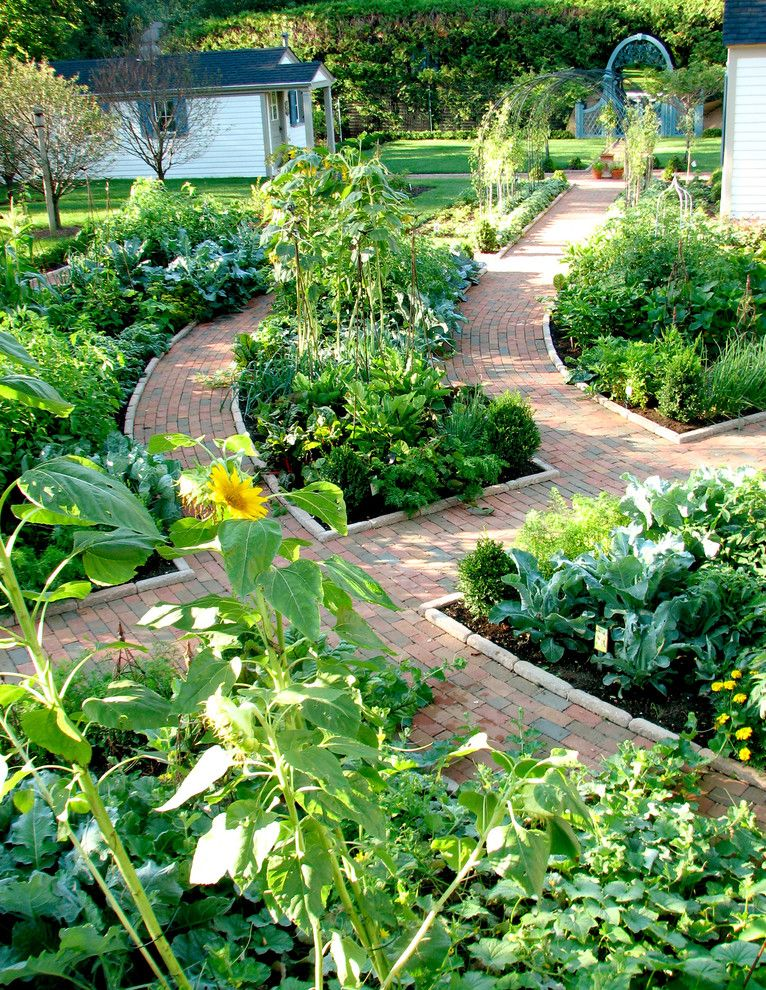 Potomac Garden Center for a Traditional Landscape with a Kitchen Garden and Potager Garden by the Brickman Group, Ltd.