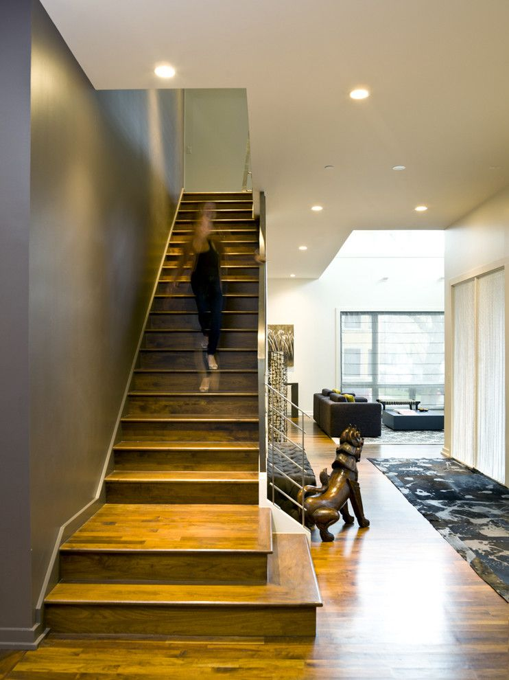 Rapport Furniture for a Modern Staircase with a Statue and Bucktown Beauty by Cynthia Lynn Photography