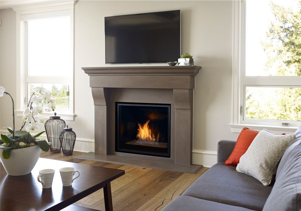 Regency Fireplace for a  Living Room with a Windows and Modern Fireplaces by Regency Fireplace Products