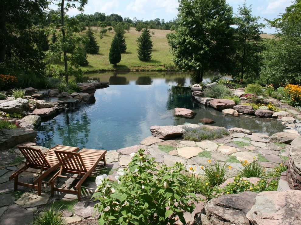 Rising Sun Pools for a Traditional Pool with a Sun Shelf and Water Features by Poole's Stone and Garden, Inc.