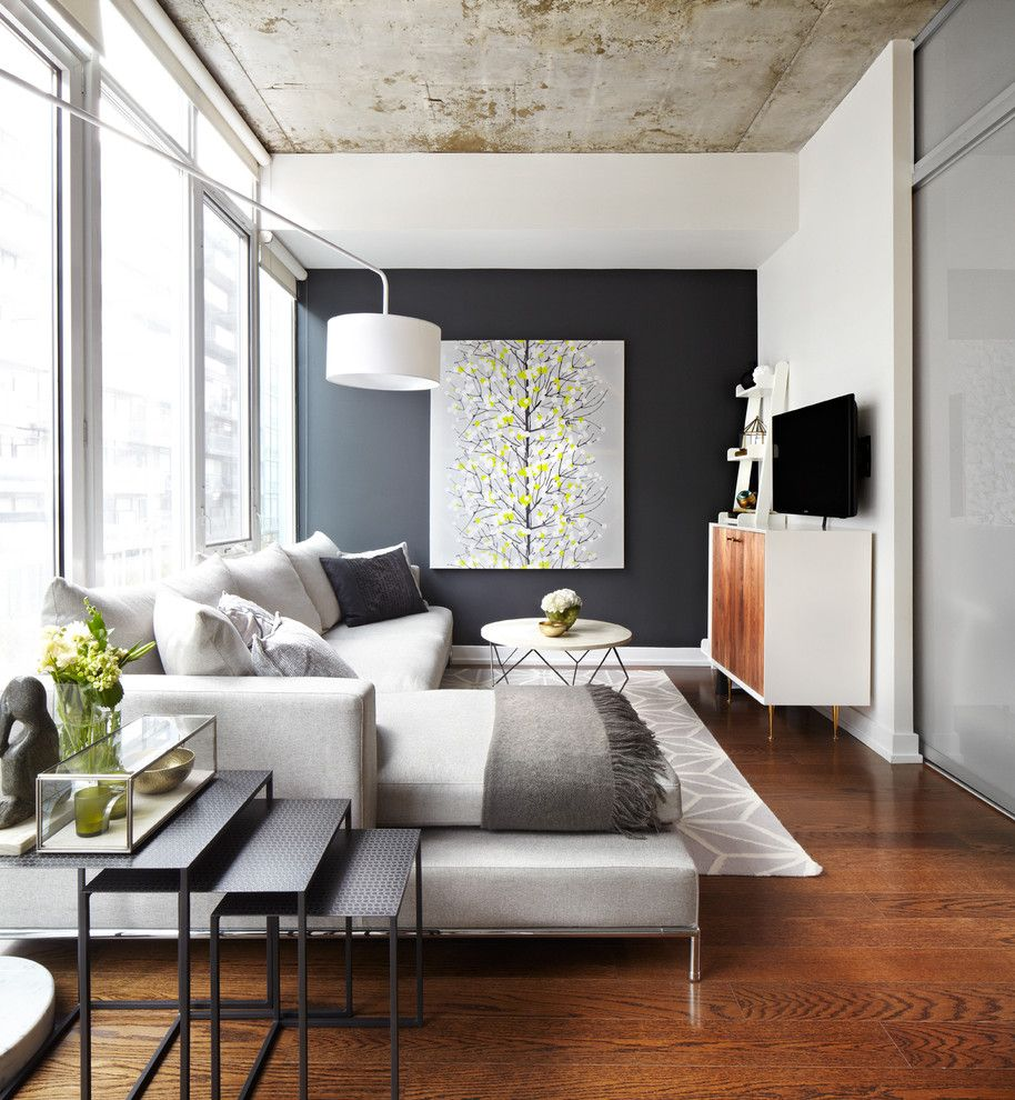 Ryland Homes Reviews for a Contemporary Living Room with a Dark Wall and Project in Progress by Lisa Petrole Photography