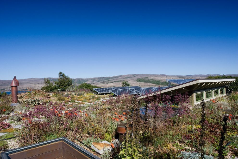 Senergy for a Contemporary Landscape with a Pv Panels and Tomales Retreat by Leger Wanaselja Architecture