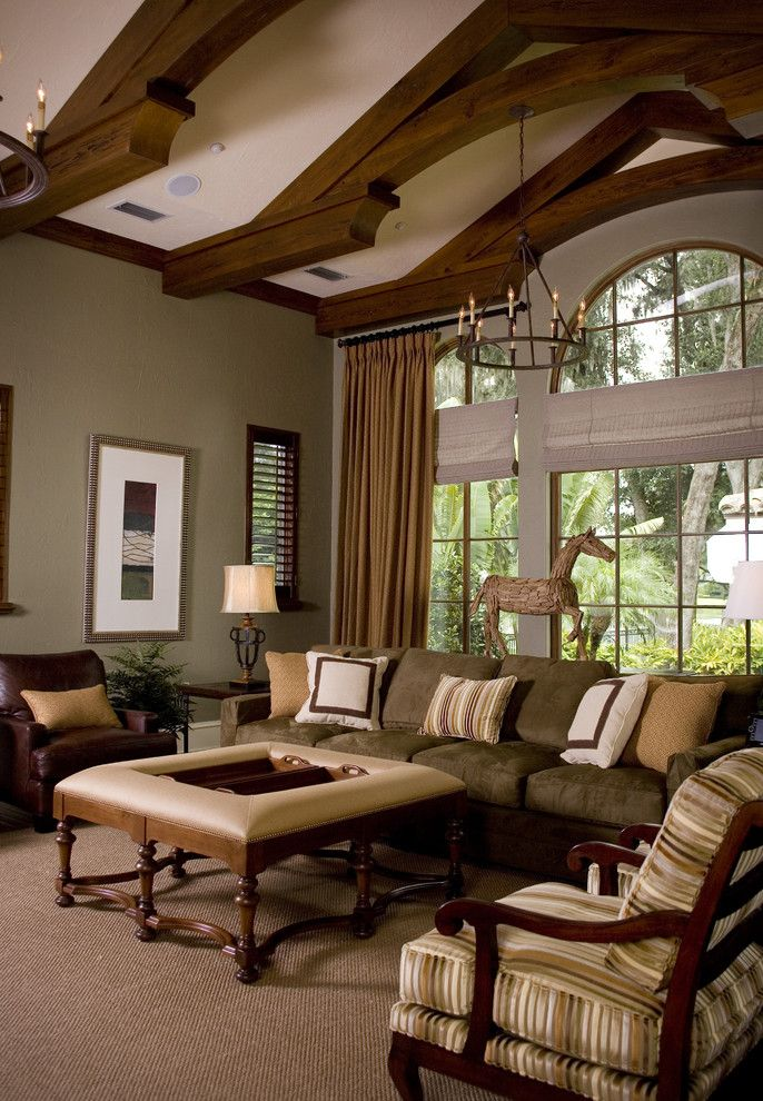 Sherwin Williams Stain Colors for a Traditional Family Room with a Vaulted Ceilings and Preserve Point by Anne Rue Interiors