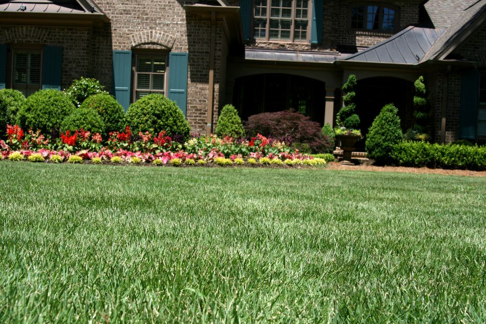 Super Sod for a Contemporary Landscape with a Pine Straw and Leisure Time(r) Zoysia Garden by Super Sod