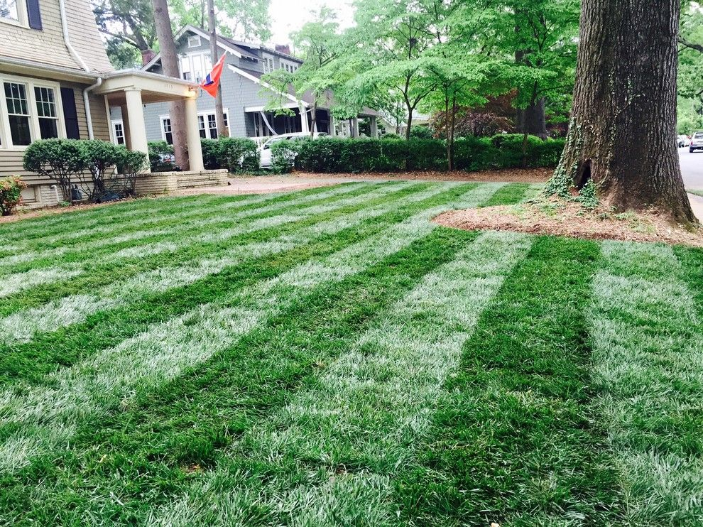 Super Sod for a Traditional Landscape with a Lawn Garden and Elite Tall Fescue Lawn by Super Sod