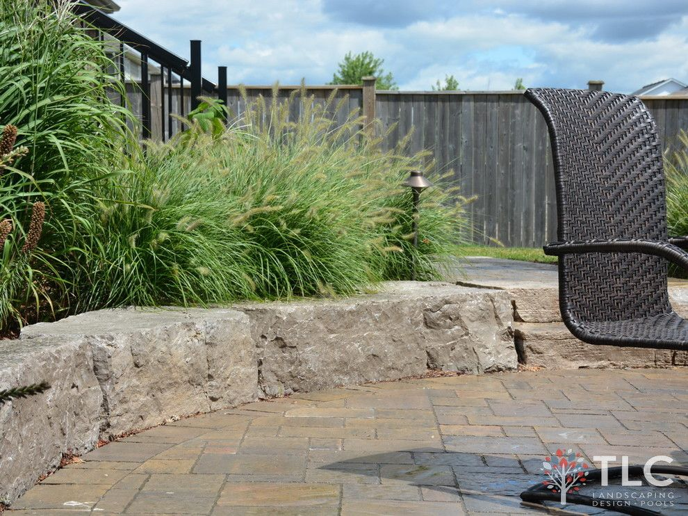 Tlc Landscaping for a Traditional Spaces with a Swimming Pools and Larouche Residence by Tlc Landcaping Design + Pools
