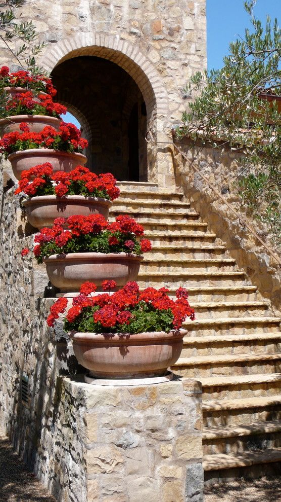 Valley Forge Flowers for a Mediterranean Staircase with a Archway and Napa Valley by Sinclair Associates Architects