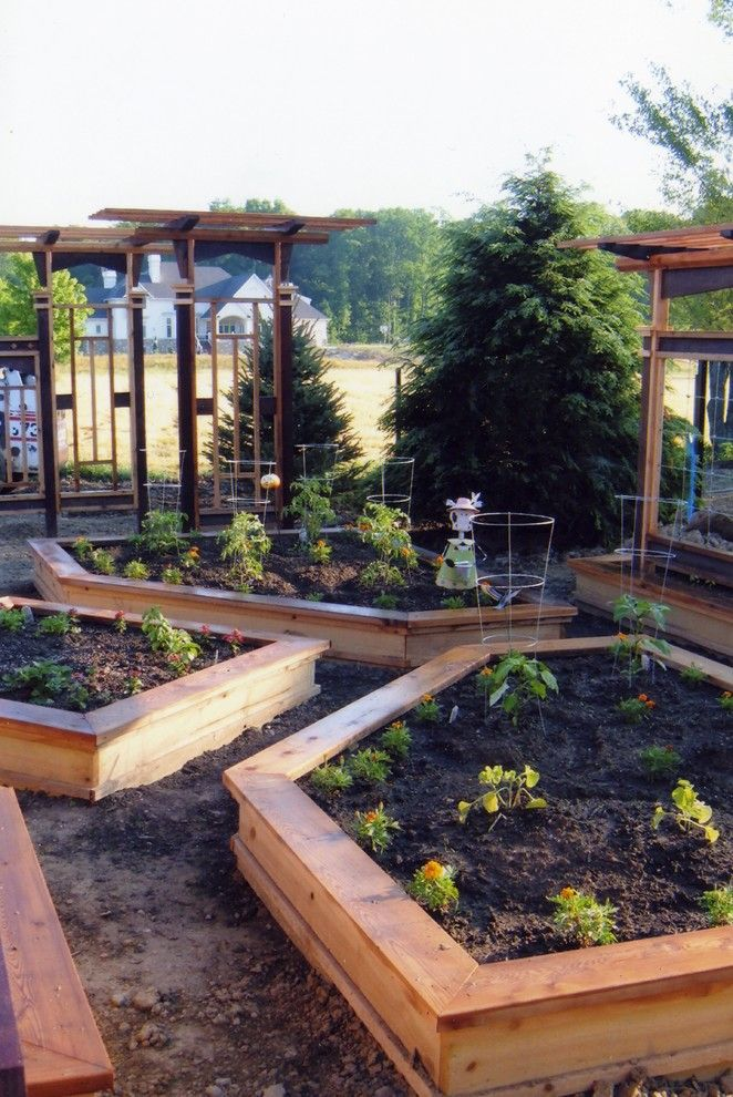 Vegetable Garden Layout for a Craftsman Landscape with a Edible Garden and Koslowski Residence by Pro Care Horticultural Services