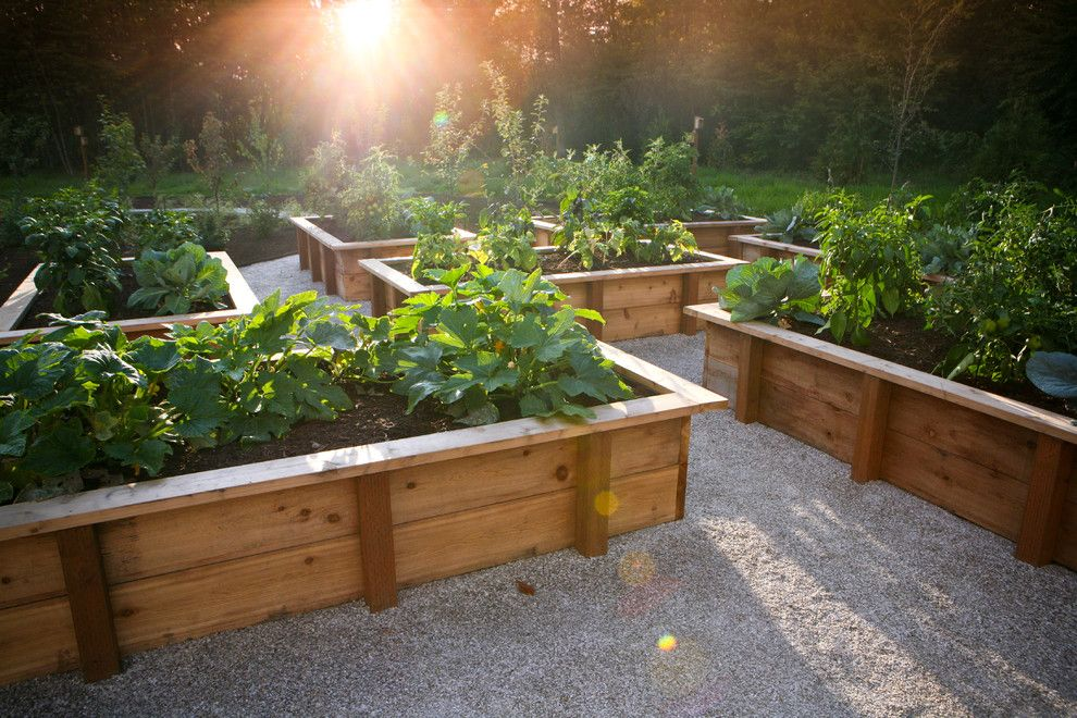 Vegetable Garden Layout for a Rustic Landscape with a Gravel and the Hampton Garden by Rob Kyne