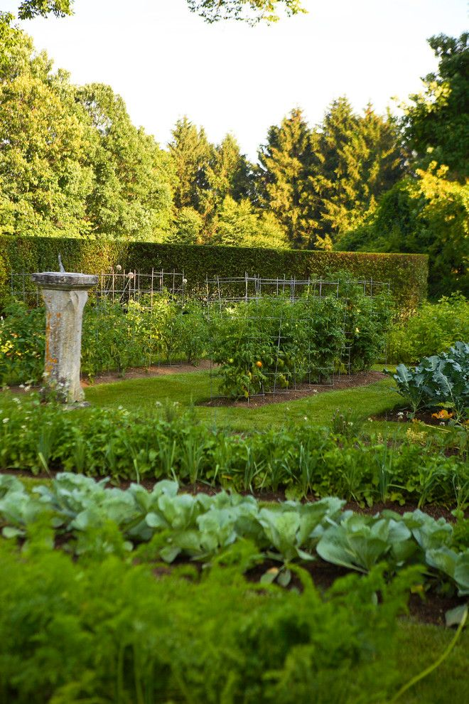 vegetable garden layout for a traditional landscape with a kitchen, Garden idea