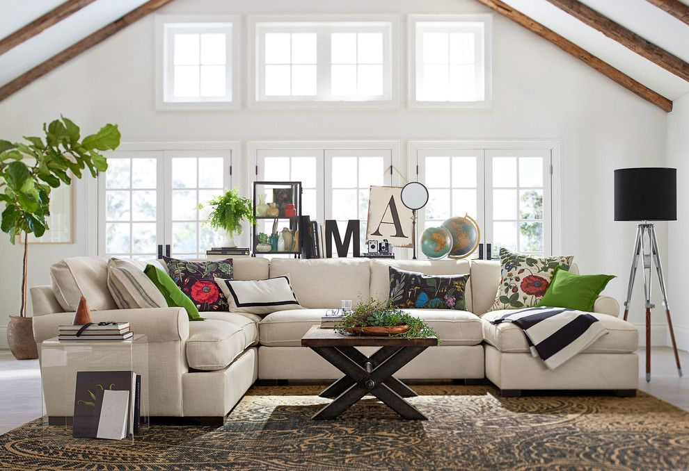 Waterwise Botanicals for a Contemporary Living Room with a Contemporary and Pottery Barn by Pottery Barn