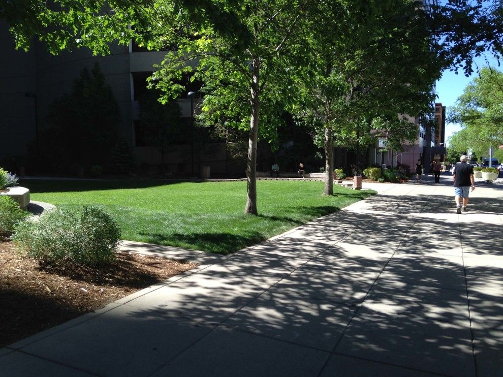 Wells Fargo Reo for a  Spaces with a  and Wells Fargo Center by Environmental Designs, Inc. by Associated Landscape Contractors of Colorado
