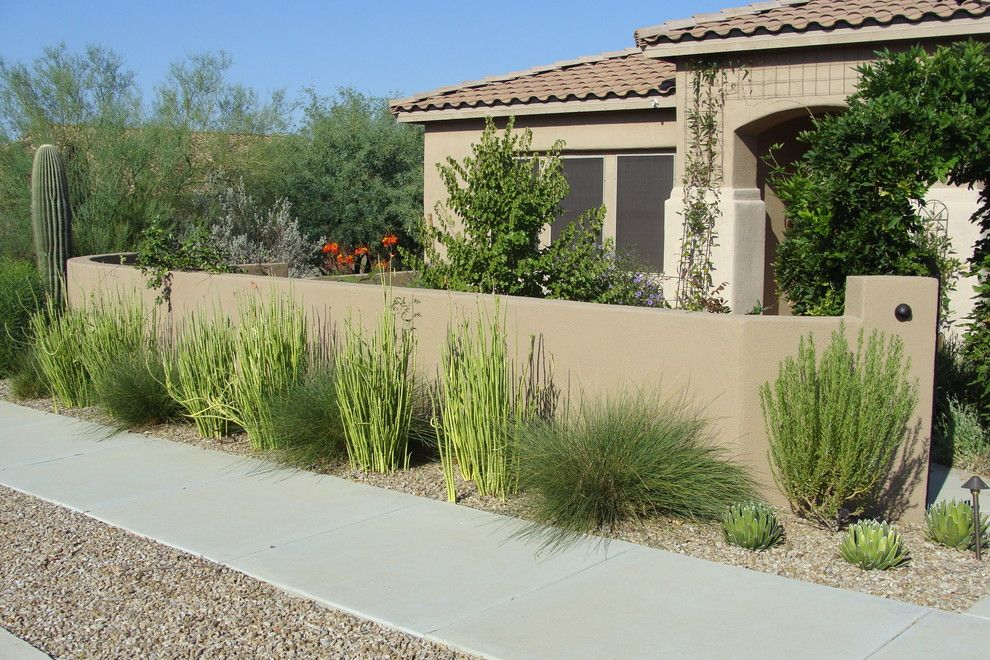 Xeriscaping for a Mediterranean Landscape with a Xeriscape and Marana Courtyard by Casa Serena Landscape Designs Llc