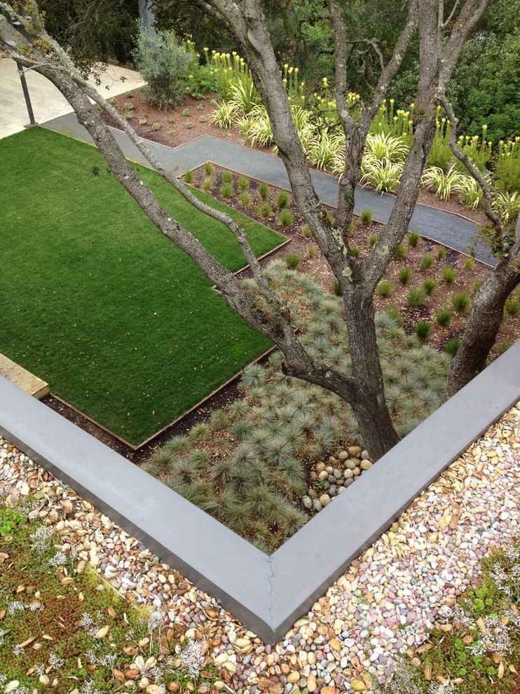 Xeriscaping for a Modern Landscape with a Mass Plantings and Modern Garden/ Green Roof by Costello Kennedy Landscape Architecture