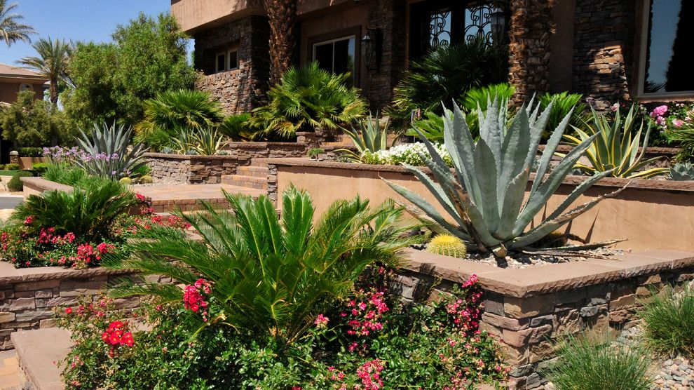 Chip and Dales for a Mediterranean Landscape with a Regal Mist and Softscaping by Chip N Dale's Custom Landscaping