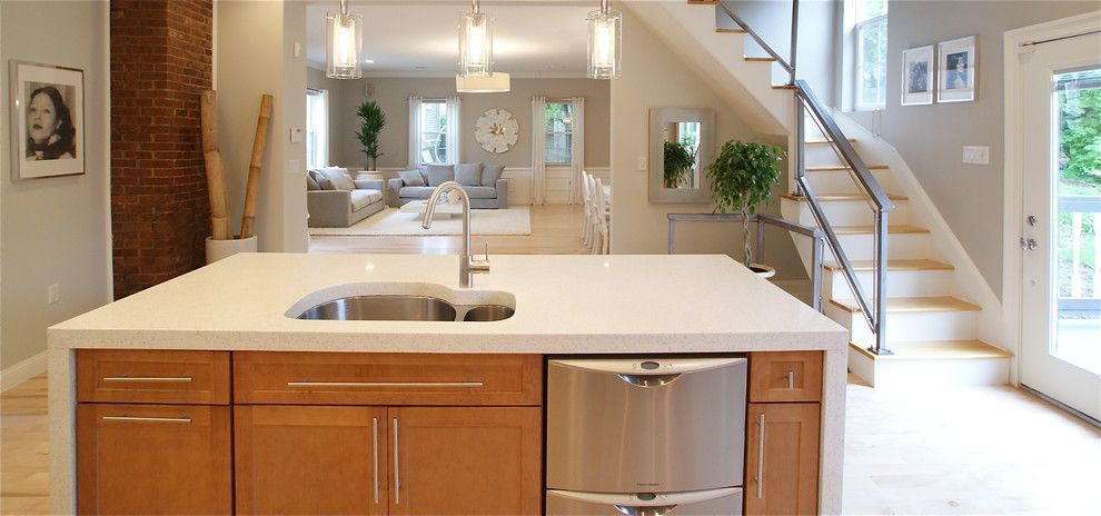 Cleaning Dishwasher with Vinegar for a Contemporary Kitchen with a Kitchen Hardware and Converted Carriage House by Melissa Miranda Interior Design