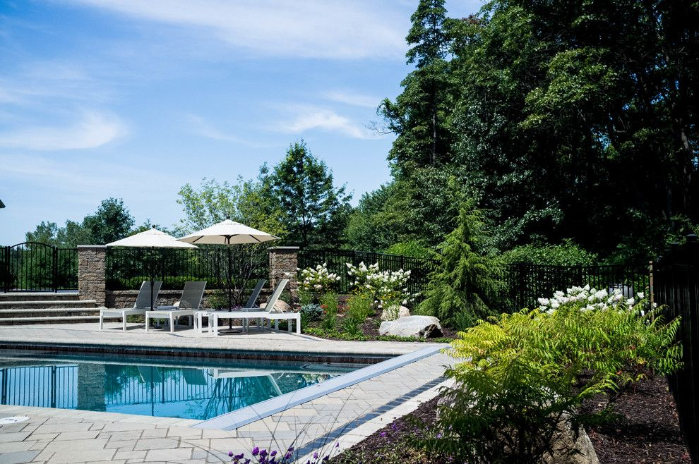 Haworth Holland Mi for a Traditional Pool with a Vanishing Edge Pools and Holland Residence by Meadowgreen Group