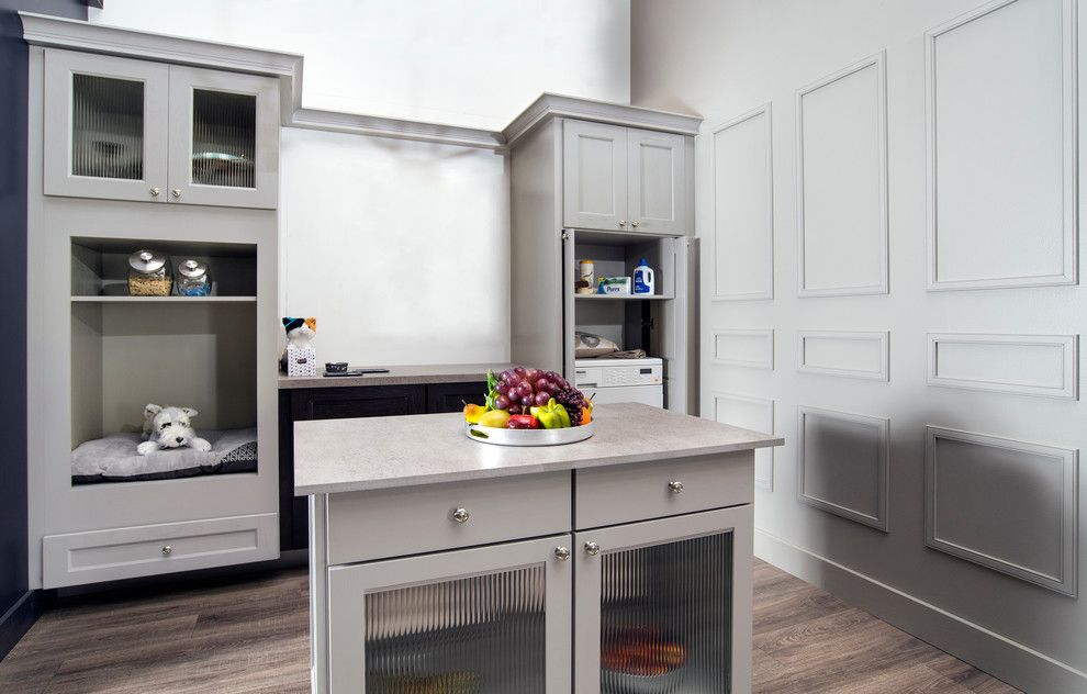 Midwest Homes for Pets for a Contemporary Kitchen with a Fluted Glass and Wellborn Cabinet by Wellborn Cabinet, Inc.