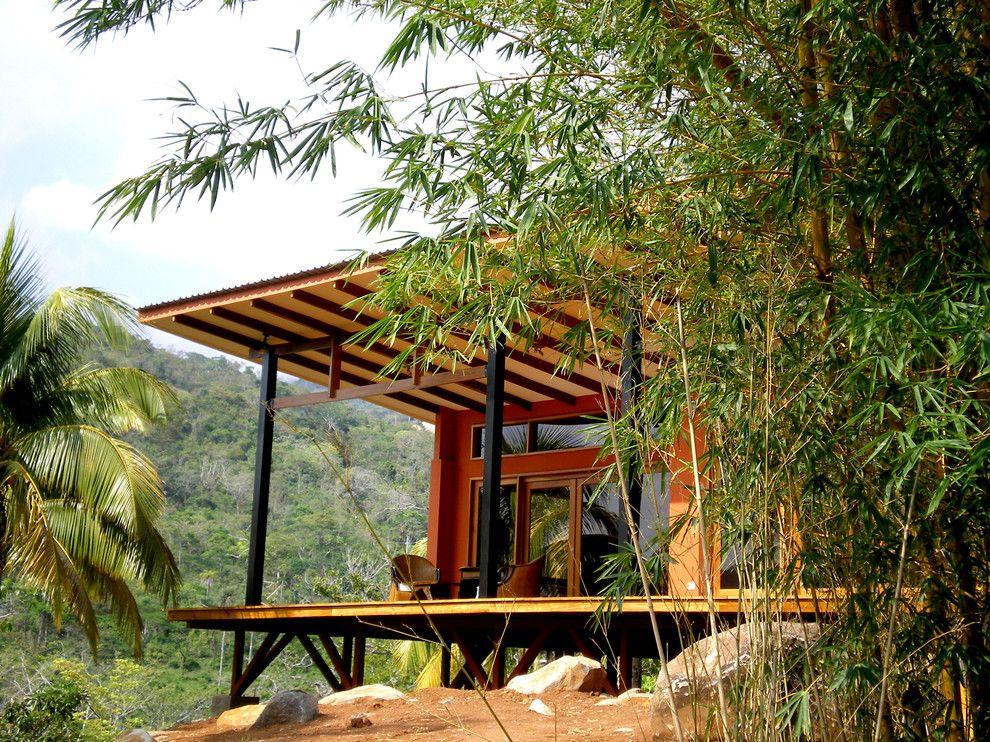 Peaceful Valley Farm Supply for a Tropical Exterior with a Landscape and Miramar Bungalow by Fivedot