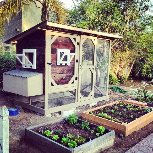 Reclaimed Wood San Diego for a Traditional Landscape with a Sustainable and Reclaimed Wood Chicken Coop by San Diego Woodworks